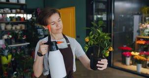 Vrolijke jonge bloemist het water geven installatie in bloemopslag die spuitbus gebruiken die van baan genieten stock footage