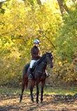 Vrolijke jonge vrouw en haar paard in de herfst Royalty-vrije Stock Fotografie