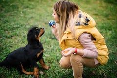 Vrolijke jonge vrouw zitting en het spelen haal met haar hond op gras stock fotografie