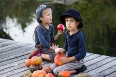 Vrolijke jongens die met pompoenen en appelen zitten Stock Foto's