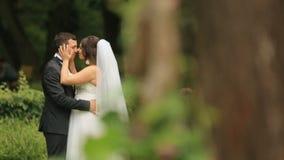 Vrolijke jonggehuwden die en een eskimokus in groen de zomerpark omhelzen maken De knappe bruidegom omhelst teder zijn mooi stock video