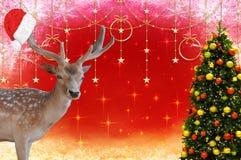 Vrolijke Kerstmis een hert met een bonnet van de Kerstman op zijn geweitakken en een verfraaide Kerstmisboom op mooie Kerstmis B royalty-vrije stock foto