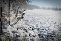Vrolijke Kerstmis en Gelukkige Nieuwjaar 2017 in natuurlijke kaart, originele Kerstmisachtergrond van aard Stock Fotografie