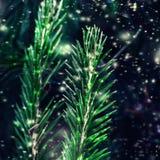 Vrolijke Kerstmis en Gelukkige Nieuwjaarskaart in uitstekende stijl met sneeuwvlokken Royalty-vrije Stock Afbeeldingen