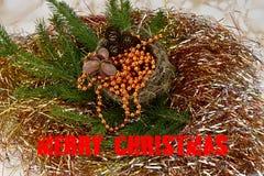 Vrolijke Kerstmis Nette tak met een nest, noten en denneappels Inschrijvings Vrolijke Kerstmis Royalty-vrije Stock Afbeelding