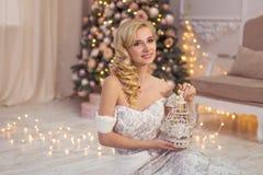 Vrolijke Kerstmis, nieuw jaar Stock Afbeeldingen