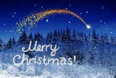 Vrolijke Kerstmis schrijven en het de winterbos Royalty-vrije Stock Fotografie