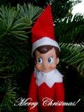 Vrolijke Kerstmisgroet van Elf op de Plank stock afbeeldingen