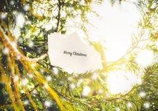 Vrolijke Kerstmistekst Stock Fotografie