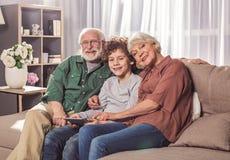 Vrolijke opa en oma met kleinzoon stock afbeeldingen