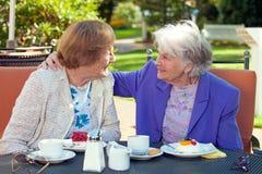 Vrolijke Oude Vrouwen die bij de Openluchtlijst spreken royalty-vrije stock foto