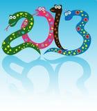 Vrolijke slangen Royalty-vrije Stock Fotografie