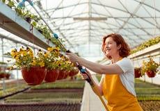 Vrolijke Tuinman Watering Plants royalty-vrije stock afbeeldingen