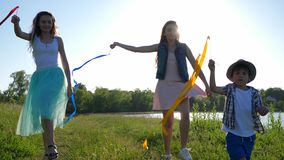 Vrolijke vrienden met gekleurde linten die op openlucht dichtbijgelegen meer lopen stock video