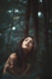 Vrouw alleen in vreedzaam bos stock foto's