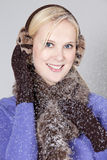 Vrouw bij de winter Royalty-vrije Stock Afbeelding