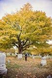 Vrouw bij graf in begraafplaats stock foto's