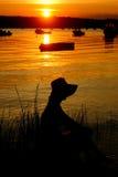 Vrouw bij zonsondergang Royalty-vrije Stock Foto's