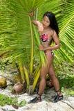 Vrouw in bikini die zich achter een groot blad bevinden royalty-vrije stock afbeeldingen
