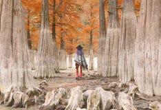 Vrouw in bomen royalty-vrije stock afbeelding