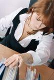 Vrouw in bureauonderzoek een dossier Royalty-vrije Stock Foto's