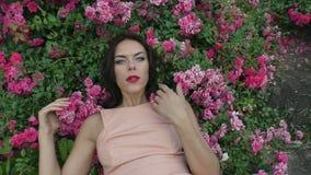 Vrouw in de rozen stock videobeelden
