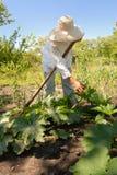 Vrouw in de tuin Stock Afbeelding
