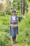 Vrouw in de tuin Royalty-vrije Stock Afbeeldingen