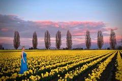 Vrouw in de weiden van de lentegebieden met gele bloemen stock foto's