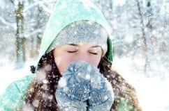 Vrouw in de winter royalty-vrije stock afbeelding