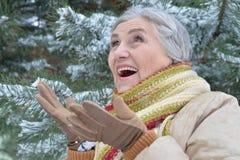 vrouw in de winterkleren het stellen stock foto