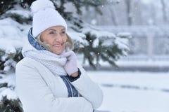 vrouw in de winterkleren het stellen royalty-vrije stock afbeeldingen