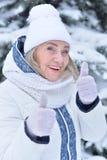 vrouw in de winterkleren het stellen stock afbeelding