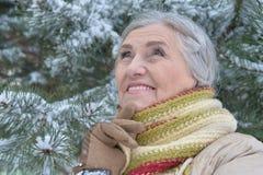 vrouw in de winterkleren het stellen royalty-vrije stock fotografie