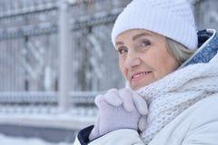 vrouw in de winterkleren het stellen royalty-vrije stock afbeelding