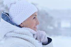 vrouw in de winterkleren het stellen stock afbeeldingen
