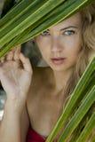 Vrouw dichtbij de palm Royalty-vrije Stock Afbeeldingen