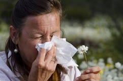 Vrouw die aan Hooikoorts lijdt Stock Foto's