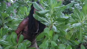 Vrouw die in aard wordt verborgen stock video