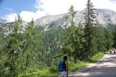 Vrouw die in alpen wandelt Stock Fotografie