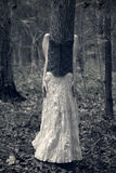 Vrouw die als boom wordt vermomd Royalty-vrije Stock Fotografie