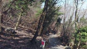 Vrouw die backpacker op voetpad binnen bos, standpunt wandelen die achteruit vliegen stock video