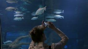 Vrouw die beelden van vissen met smartphone nemen stock videobeelden