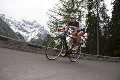 Vrouw die - bergaf weg het cirkelen biking Stock Afbeeldingen