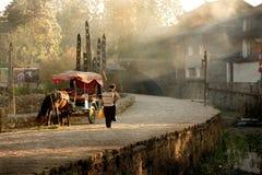 Vrouw die bij dageraad door een rivier lopen Stock Afbeelding