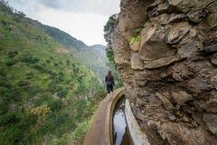Vrouw die bij voetpad langs de rotsachtige klippen lopen De stijging van de Levadanova, het eiland van Madera Royalty-vrije Stock Afbeeldingen