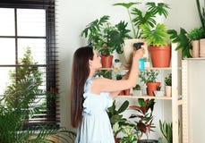 Vrouw die binneninstallaties bespuiten dichtbij muur stock foto