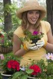Vrouw die bloemen in haar tuin plant Stock Foto