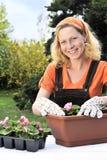 Vrouw die bloemen plant Stock Foto