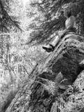 Vrouw die in borrels op een reusachtige steen zitten Stock Afbeelding